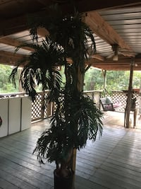 Beautiful Big 8'ft Tall Faux Palm Tree Wilmer, 36587