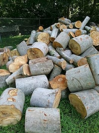 Birch rounds for Firewood Manassas, 20111