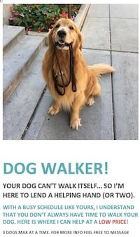DOG WALKER FOR CHEAP Richmond Hill