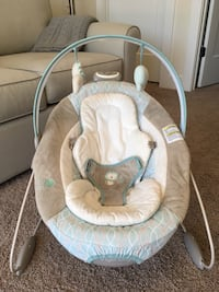 Ingenuity Infant Bouncer Rockville, 20850
