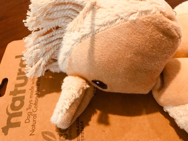 New natural ECO friendly adorable dog toy! 1af01657-dbed-4258-95d7-5bd25a6cb0e0