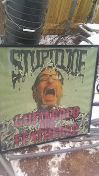 Stupid Me Guitarred and Feathered wall art