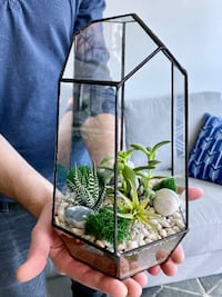 Geometric Glass Terrarium with 2 succulents and 1 airplant Toronto