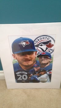 Josh donaldson collage Barrie, L4N