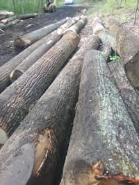 Logging4u timber cut and sold on the spot.Working Front Royal