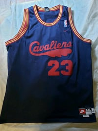 Lebron James Cleveland Cavaliers Jersey  Alexandria, 22312
