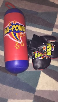 pair of purple-and-red Everlast boxing gloves Ancaster, L9K 1S1