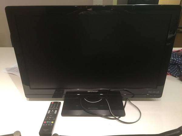 "25"" Sharp TV (or huge computer monitor)"