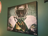 Notre Dame Canvases. Fort Mill, 29708