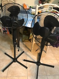 Two fans