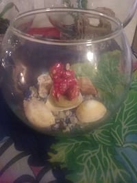 small fish bowl Laguna Hills, 92653
