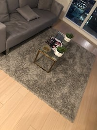 Fluffy gray carpet $100 and gold glass table $175