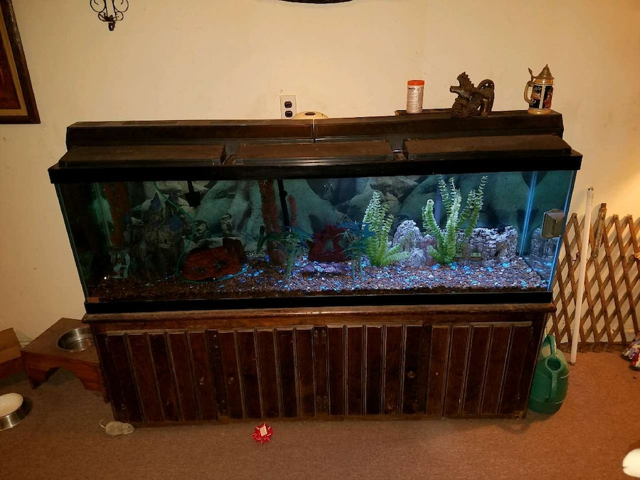 Used 125 gallon fish tank in new jersey for 125 gallon fish tank
