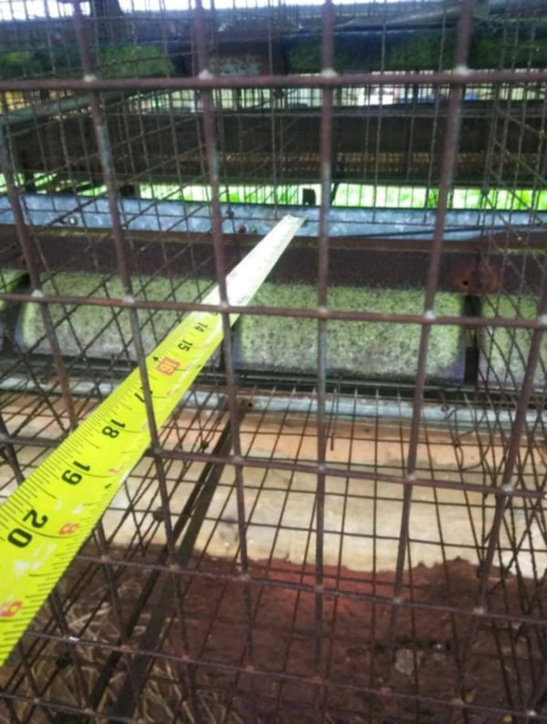 7.5ft chicken cages 342aa874-03ac-4356-ade7-c8ea8e38b470