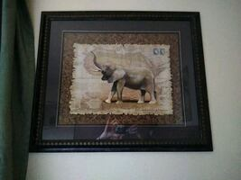 Elephant framed picture