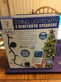 Bright Tunes string lights with four Bluetooth speakers box Crystal River, 34428