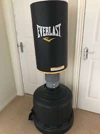 Everlast punching bag