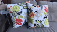 Crate and barrel outdoor pillows Annapolis, 21403