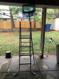 Pool ladder and pool net. Excellent condition