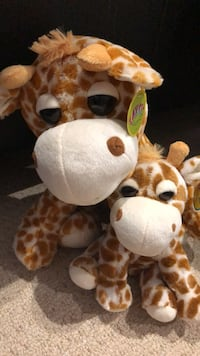 New momma and baby giraffe with tags Vaughan, L6A 4H5