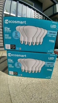 Ecosmart LED Daylights 65W Surrey, V4N 5Y3