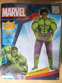Halloween/Cosplay Marvel Hulk Outfit Pickering, L1Z