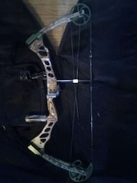Bear Instinct Compound Bow