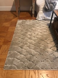 Gray and white area rug , 5* 7 size . Like new in excellent condition  Alexandria, 22301