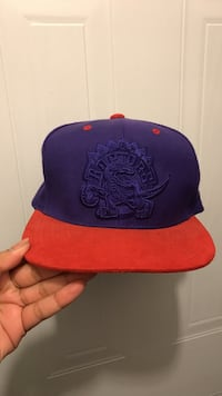 Red and purple raptors hat - worn once