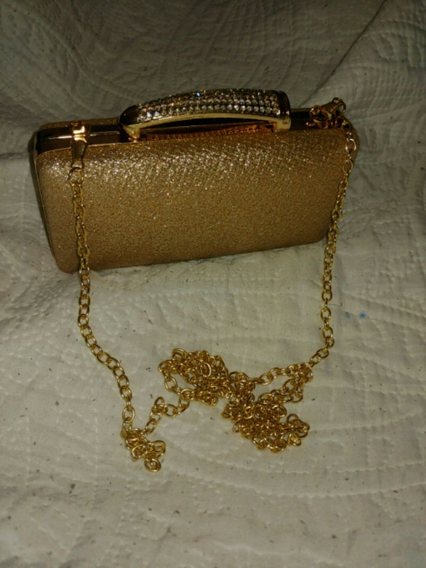 Fancy Clutch with chain