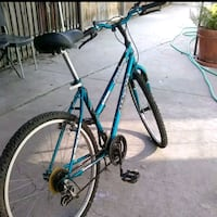 teal and black mountain bike Los Angeles, 90043