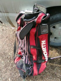 Wheeled bat bag
