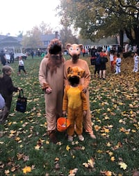 The lion king family costume - Simba, muffasa and Sirabi for sale!! Great Falls, 22066