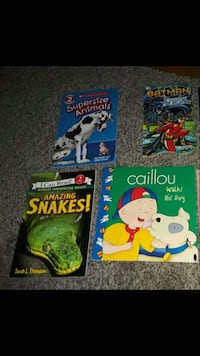 Boys books like new  Nashua, 03060