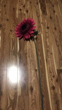 Large Flower decor