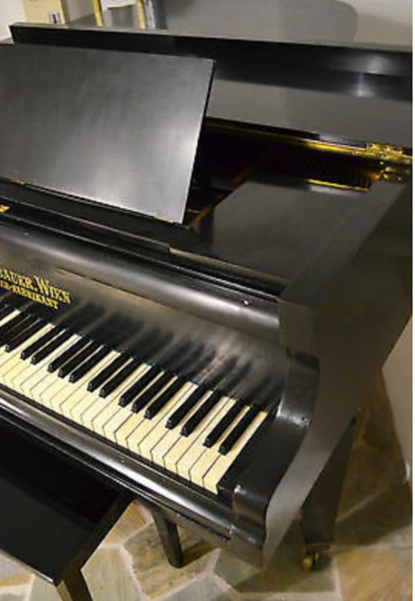 Condition : Used, Quantity : 1 available, Type : wing,Accordion style : Piano,  Number of buttons : 85, Wing type : Salon wing  687d4dfa-e345-46e1-b9ab-f50b4f03df3e