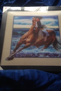 3D horse picture Chatham, N7M 6J3