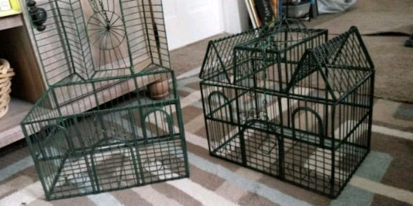 Bird cages....decorative