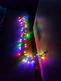 Indoor/Outdoor Christmas Lights