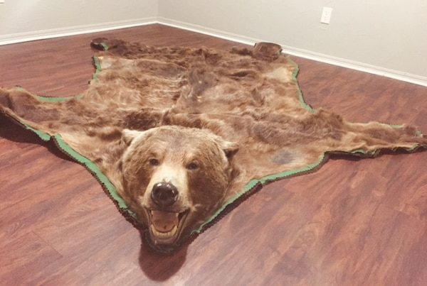 Grizzly Bear Rug 3