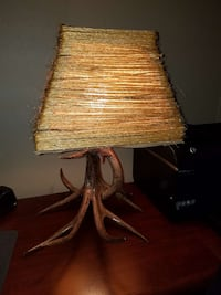 Deer antler lamp with shade  Jefferson Township