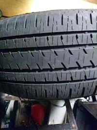 vehicle tire Palm Harbor, 34683