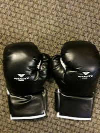 Boxing Gloves  St. Cloud, 56303
