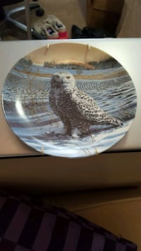 The snowy owl collector plate by Jim Beaudoin Victoria, V9A