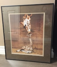 Mum and baby giraffe matted picture  Surrey, V3S