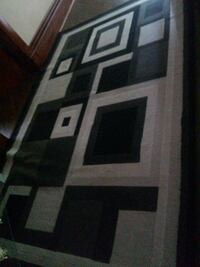 white and black area rug Kitchener, N2G 1Z4