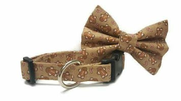 Pet Accessories and more!