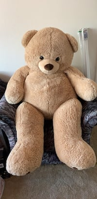 "55"" teddy bear Winter Haven, 33884"