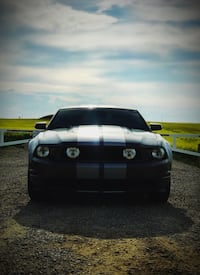 Ford - Mustang - 2010