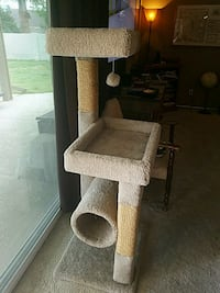 brown and gray cat tree Phoenix, 85032